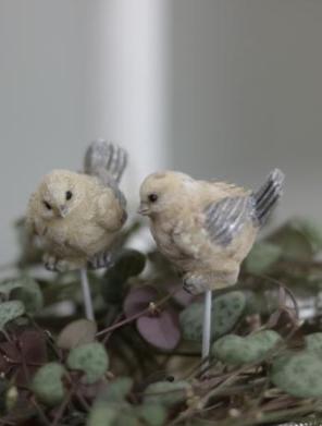 Fågel gråsparv på stick  shabby chic lantlig stil