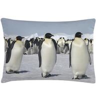 Kudde Pingviner shabby chic lantlig stil