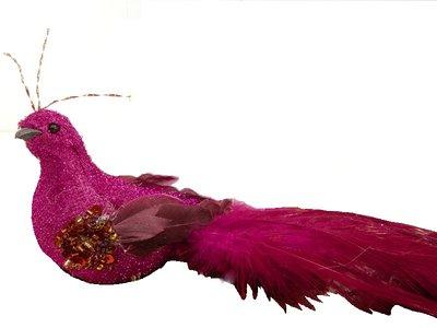 Stor Påfågel