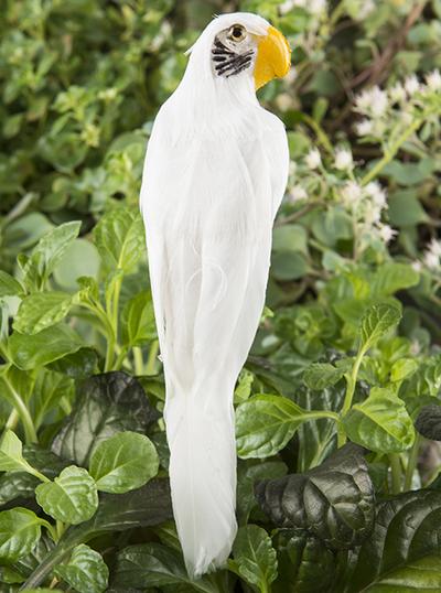 Fågel vit papegoja dekoration shabby chic lantlig stil