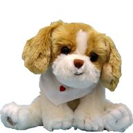 Beagle Hund hundvalp Bukowski design